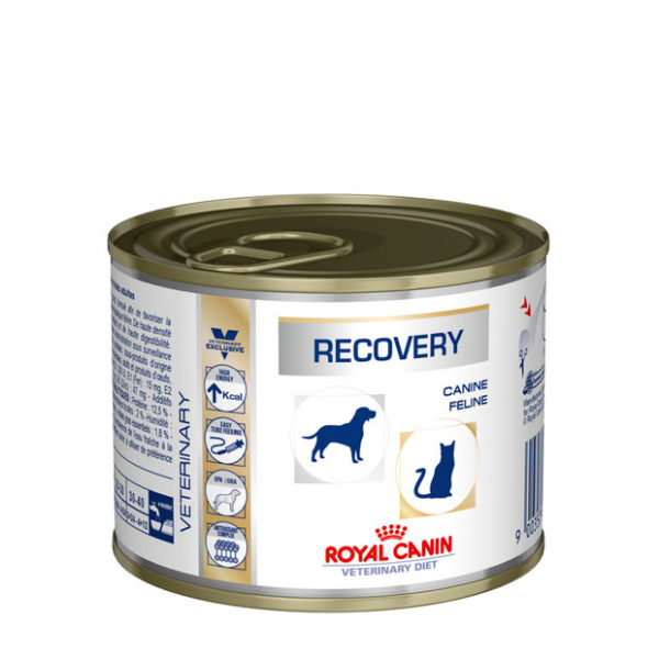 Royal Canin Recovery Dog Food Can